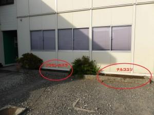 P1110651_s
